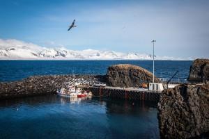 islande-snaefelsnes