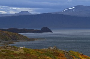 immanquables-islande-Fjord-Ouest