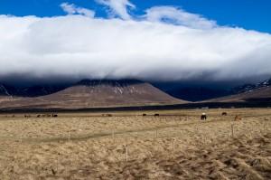 ISLANDE-OUEST-MARS-ISBC0842