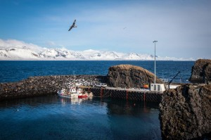 Snæfellsnes-islande-IISBC0967